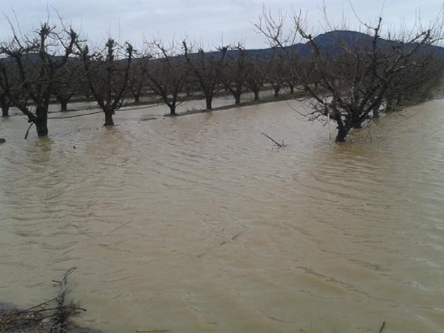 El fuerte viento vuelve a provocar daños en el Instituto de Calamonte