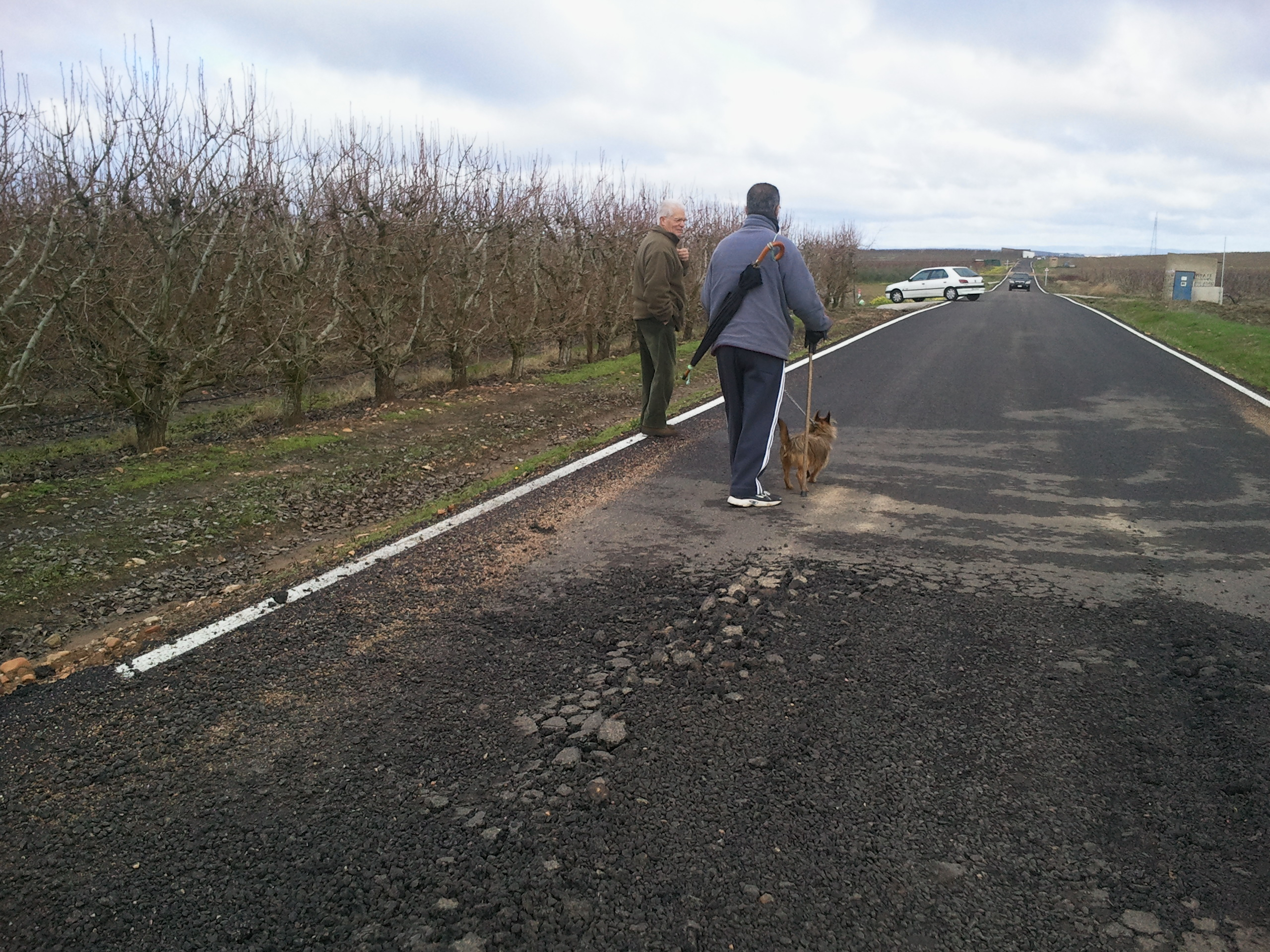 Las recientes lluvias provocan el levantamiento de caminos vecinales en Calamonte